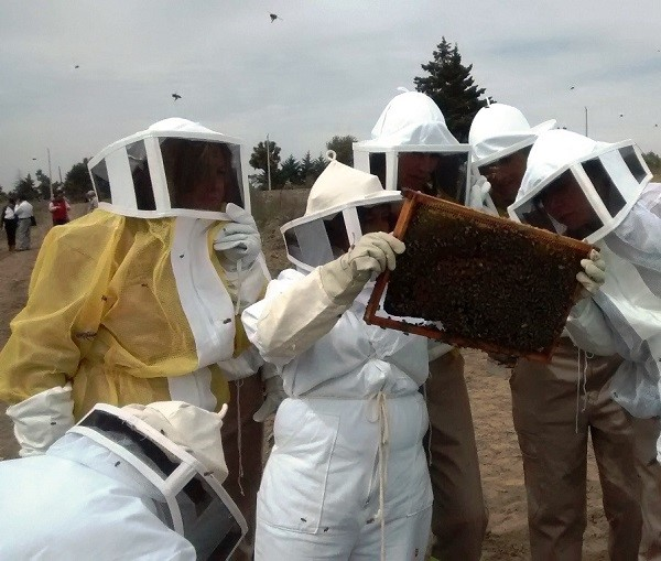 Mieleros Puebla denuncian pesticidas monsanto dos