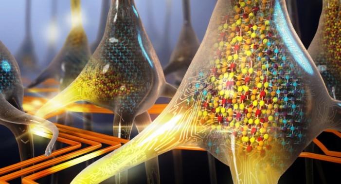 Crean neuronas artificiales que funcionan como las del cerebro
