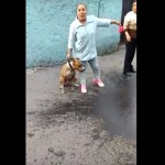 Usa a pitbull para intimidar a vecinos (VIDEO)