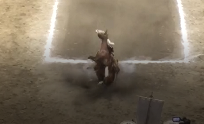 Manuel Velasco Coello cae de caballo en un evento (VIDEO)