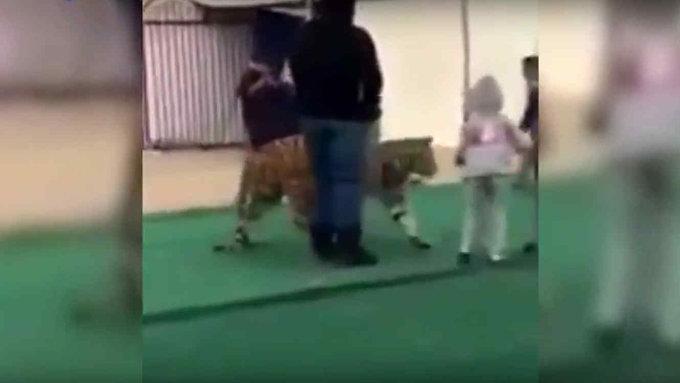 Tigre ataca a niña en mercado de Arabia Saudita (video)