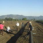 La 'consulta' sobre gasoducto en Pahuatlán, 'una simulación'