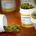Desde hoy es legal el uso medicinal y científico de la marihuana en el país
