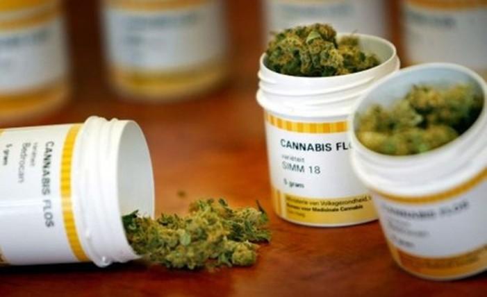 Dan mariguana medicinal a enfermos de cáncer y niños con epilepsia en el Edomex