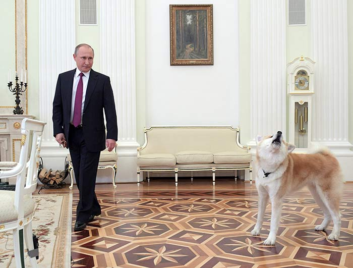 Vladimir Putin ofrece asilo al exdirector del FBI, James Comey
