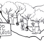 AMLO presenta serie 'Ideas del Cambio' sobre reforestación (Video)