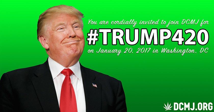 Receta para el malviaje repartirán 4,200 porros antes de discurso de Donald Trump