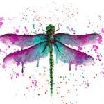 El beso de  la libélula (poema)