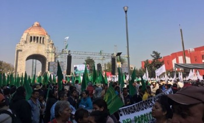 Monumental marcha campesina invade la CDMX
