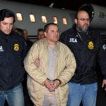 Captura de capos del narco no ha logrado avance en la lucha contra el crimen
