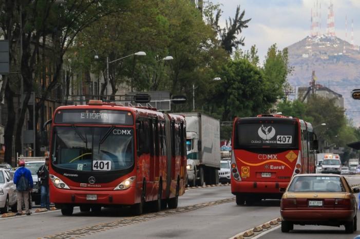 Para construir carril del Metrobús talan 49 árboles en calzada Misterios