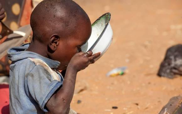 Peligra el futuro de la alimentación humana