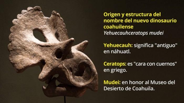 Descubren nuevo dinosaurio en Coahuila; le ponen nombre náhuatl