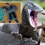 Dragones de Komodo podrían poner fin a la resistencia a antibióticos