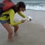 Cría de tiburón mordió a turista que trató sacarlo del mar para tomarse selfie (video)