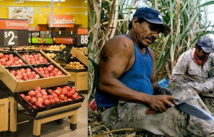 Walmart ahorca al campo mexicano y viola la ley
