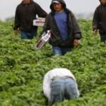 Hacienda reconoce a migrantes como factor clave en la economía global
