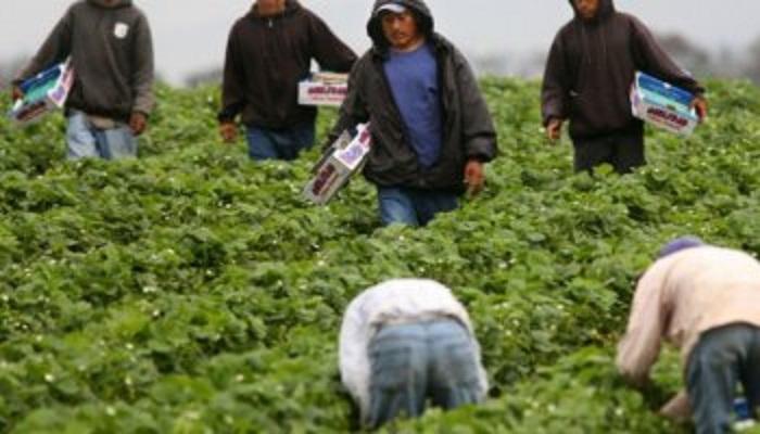Inmigrantes-m
