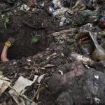 Policías siguen desapareciendo a personas en Veracruz: Colectivos de búsqueda