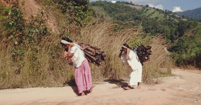 Indígenas de Guerrero preparan informe de crímenes contra ellos ante la ONU