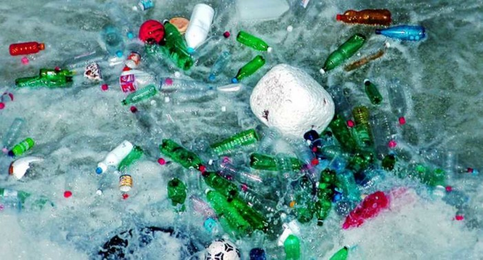Ártico acumula grandes cantidades de plástico, llegan de EU y Europa