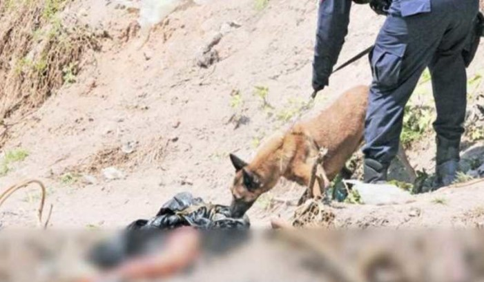 Perro halló pierna semicalcinada de una persona en canal de Ecatepec