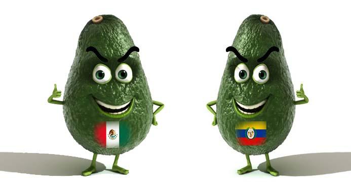 Trump avala que aguacate colombiano, compita contra el mexicano en EU