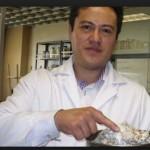 Especialista del IPN descubre hongos que purifican agua contaminada por fármacos