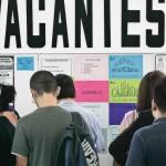 Empleo y participación laboral en México seguirán débiles hasta 2018: OCDE