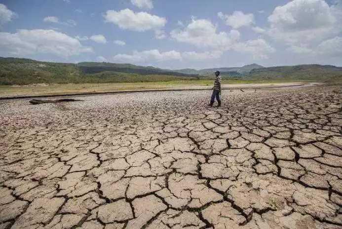 Desertificación y degradación de suelos en México, incrementan problemas sociales