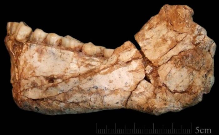 Hallan los restos de los primeros 'Homo sapiens' en Marruecos