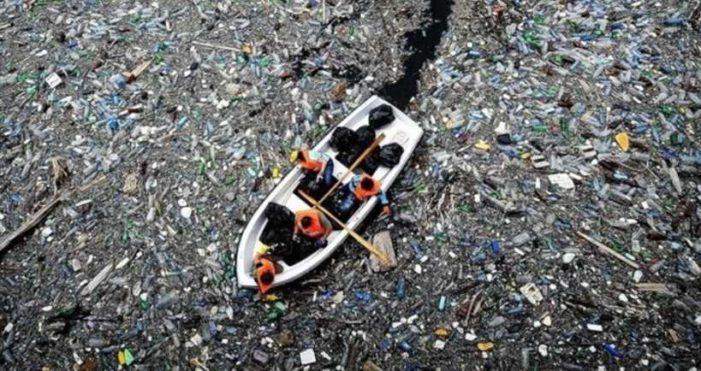 Una isla de desechos plásticos flota en el Pacífico Norte