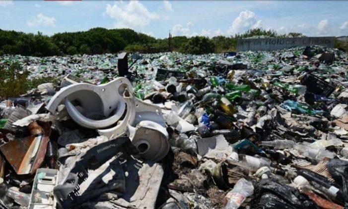 En una semana retiran 12 toneladas de basura en isla Holbox