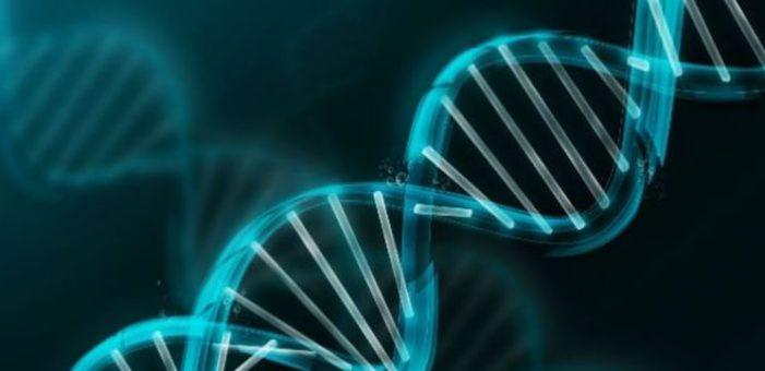 Cientificos logran modificar genéticamente embriones humanos