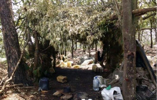 Desmantelan tres campamentos del narco en Jalisco