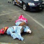Asesinan, amarran y embolsan a perros Pitbull en Coyoacán (VIDEO)