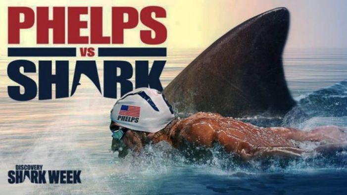 Michael Phelps contra un Tiburón Blanco… ¿Quién ganó? (VIDEO)