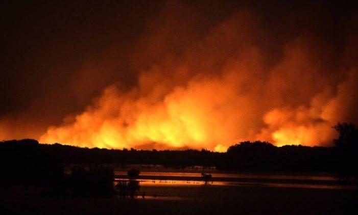 700 hectáreas de pastizal en Mérida se han consumido por incendio
