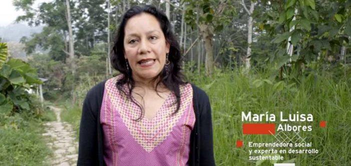 Campesinos, cooperativas y ecología son prioridad en Proyecto de Nación de AMLO