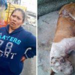 Mujer arroja a su perro al río, luego fue 'dormido' (VIDEO)