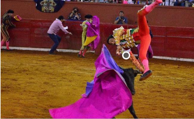 Torero recibe severa cornada en SLP (VIDEO)