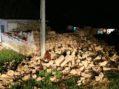 Más de 400 familias fueron desalojadas en Morelos; el cerro se abrió y corren peligro