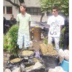En su primer entrega colombianos 'se pierden' y los detienen con 50kg de mariguana