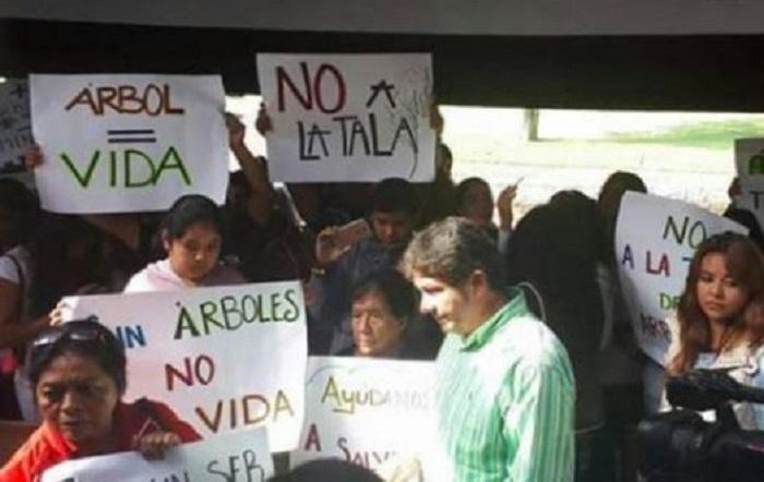Alertan por ecocidio en Valle de Bravo; priisas están tras el proyecto