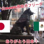 A la estatua de Hachiko en Japón le ponen chaleco de la Marina en honor  'Frida'