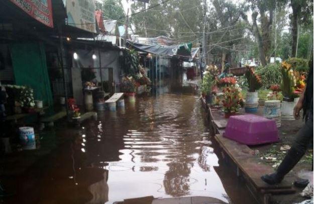 Mercado de flores de Cuemanco queda inundado tras las intensas lluvias