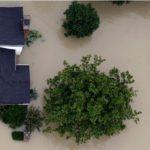 Se eleva a 50 la cifra de muertos por Harvey, deja más de 32 mil desplazados