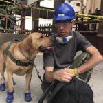 Además de detectar vida humana, Yona rescata a perros y gatos atrapados