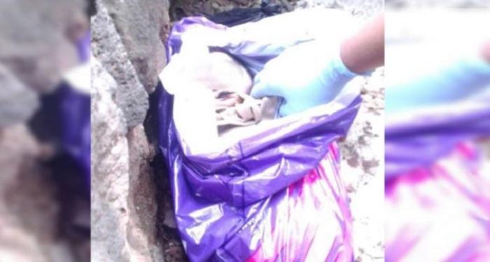 Hallan muerto a un bebé en el Bosque de Chapultepec