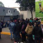 Cientos de personas hicieron fila para tomarse foto con 'Frida' en la Semar